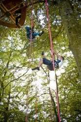 grimpe-arbres-keravel-bretagne