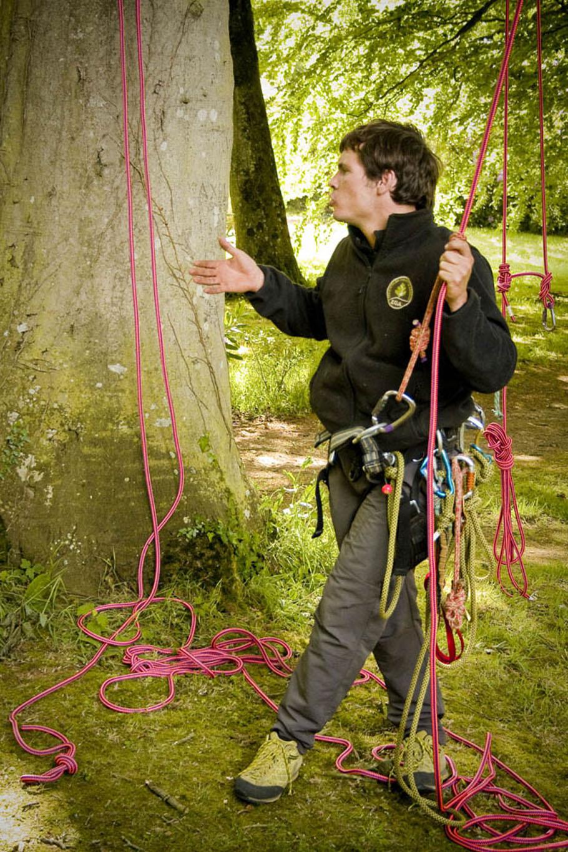 grimpe-arbres-keravel-bretagne_8