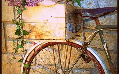 Location vaisselle & décoration Vintage