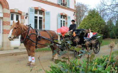 Mariage en calèche au Domaine de Keravel en Bretagne